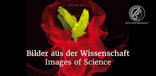 App Store Banner Bilder aus der Wissenschaft