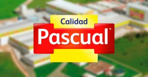 audiophones Orpheo Calidad Pascual
